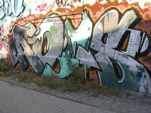 DSCN0131