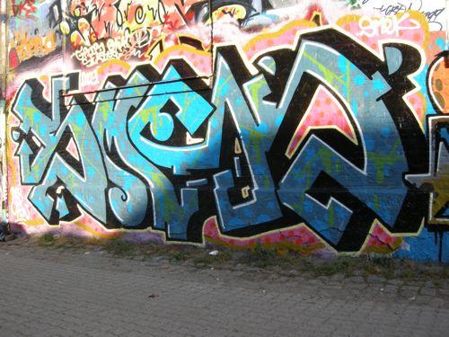 DSCN0133