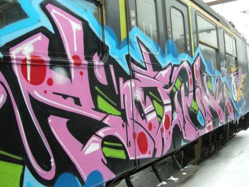 DSCN1272