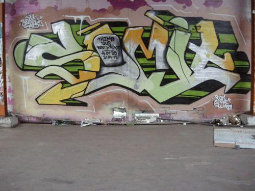 DSCN2010