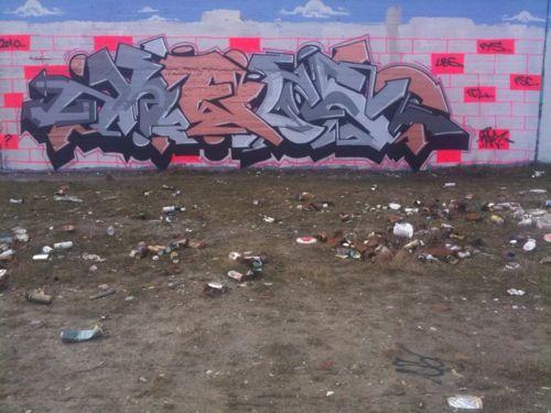 braskart20108