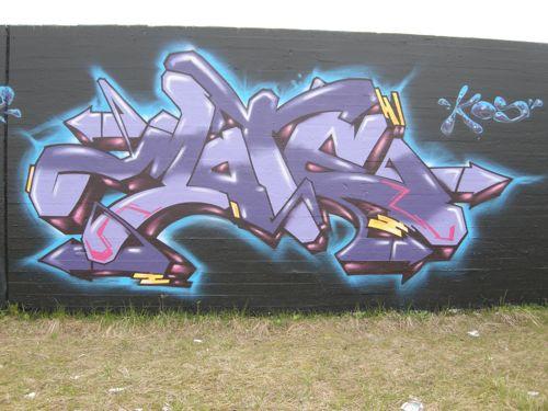 DSCN2213