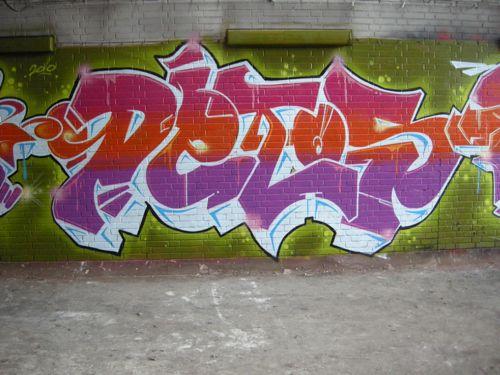 DSCN2465