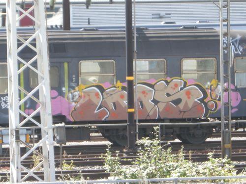 DSCN3296