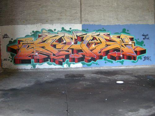 DSCN3446