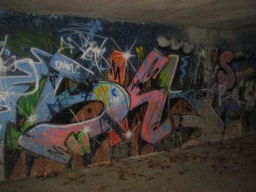 Efterår2010 510