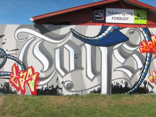 Roskilde20111