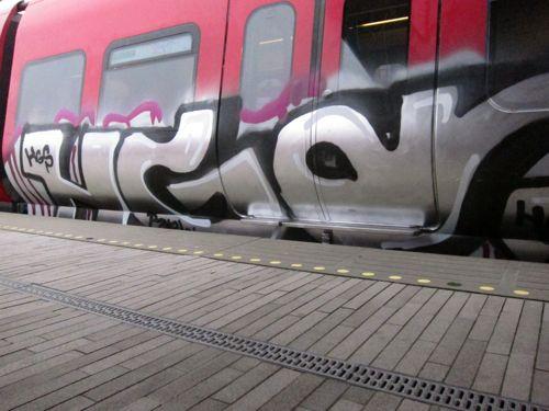 Svin2011:1114