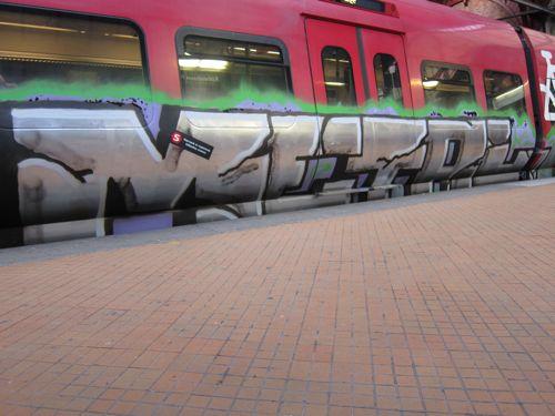 Svin201102