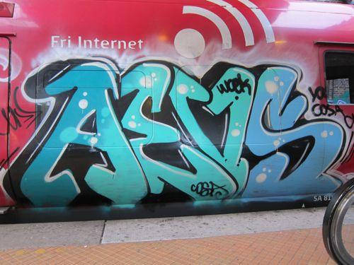 Svin201105