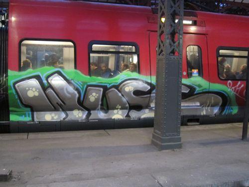 Svin201106