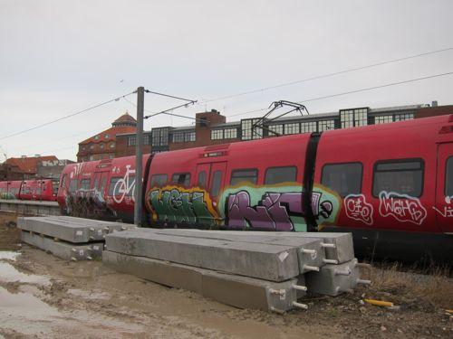 Svin201109