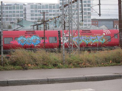 Svin20111