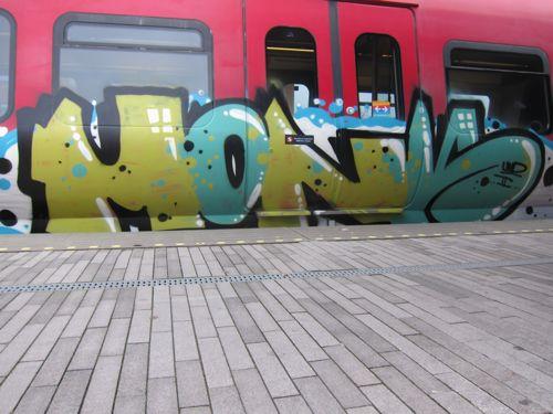 Svin201110