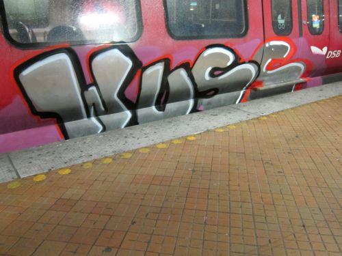 Svin201111