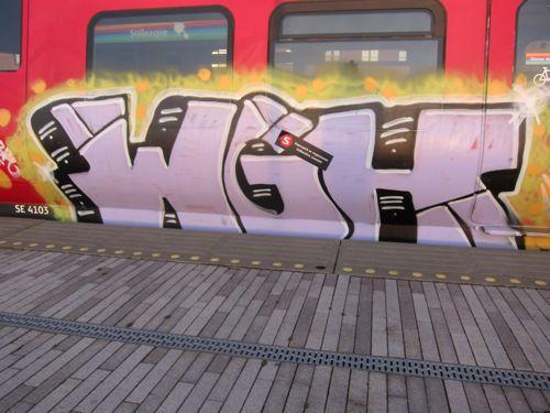 Svin20123