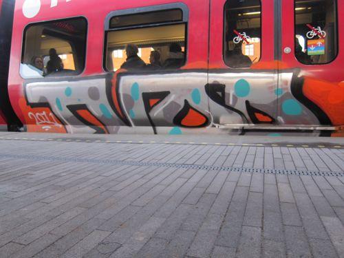 Svin20127