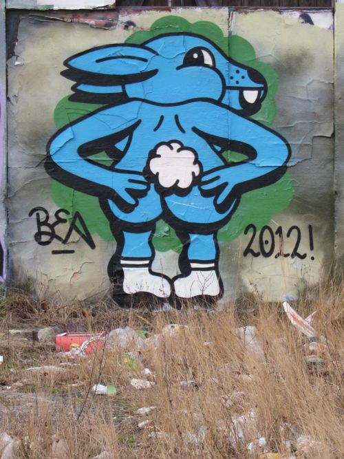 braskartbloggrafiitCPH201209