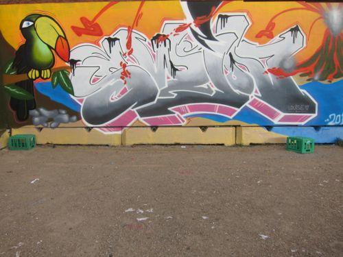 braskartbloggraffiti201201