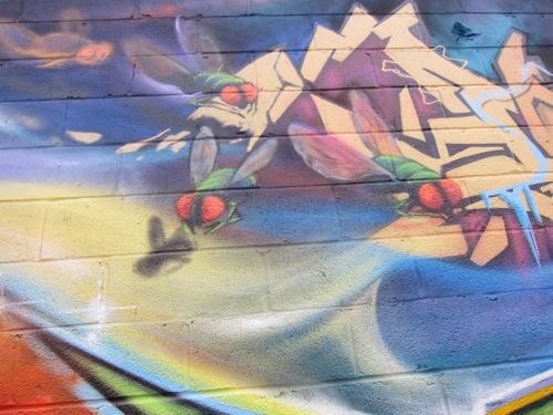 braskartblogbrooklyngraffiti08
