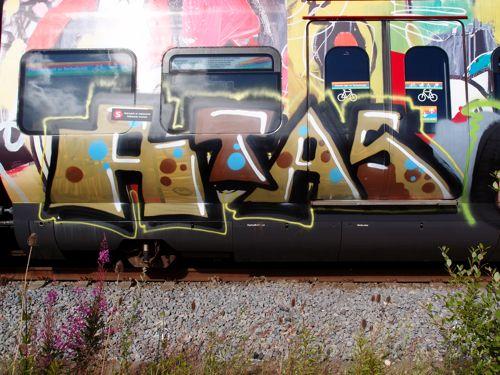 braskstell201204