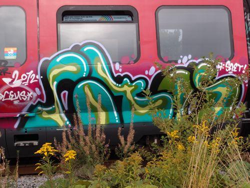 svin201221