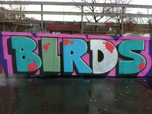 birds131