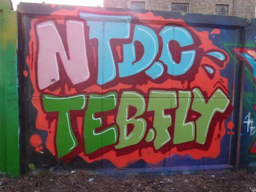 NTDC1
