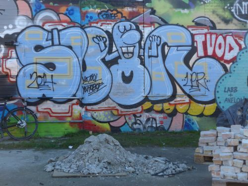 BraskWalls17