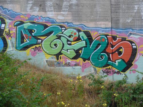 BraskGraffitiBlog1