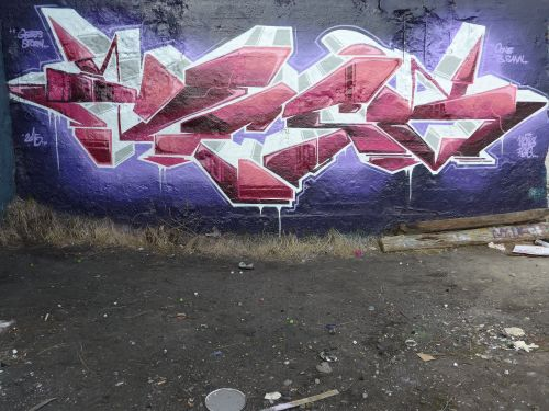 Braskgraffitiwalls48