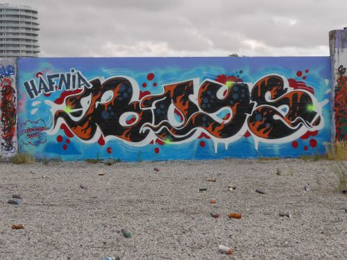 Brask27