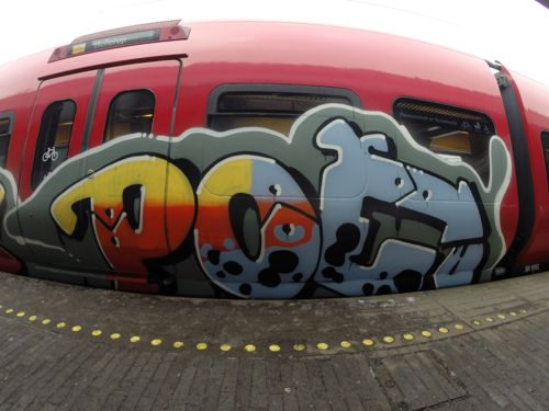 DCIM101GOPRO